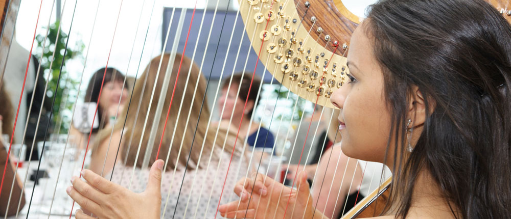 West Sussex Harpists