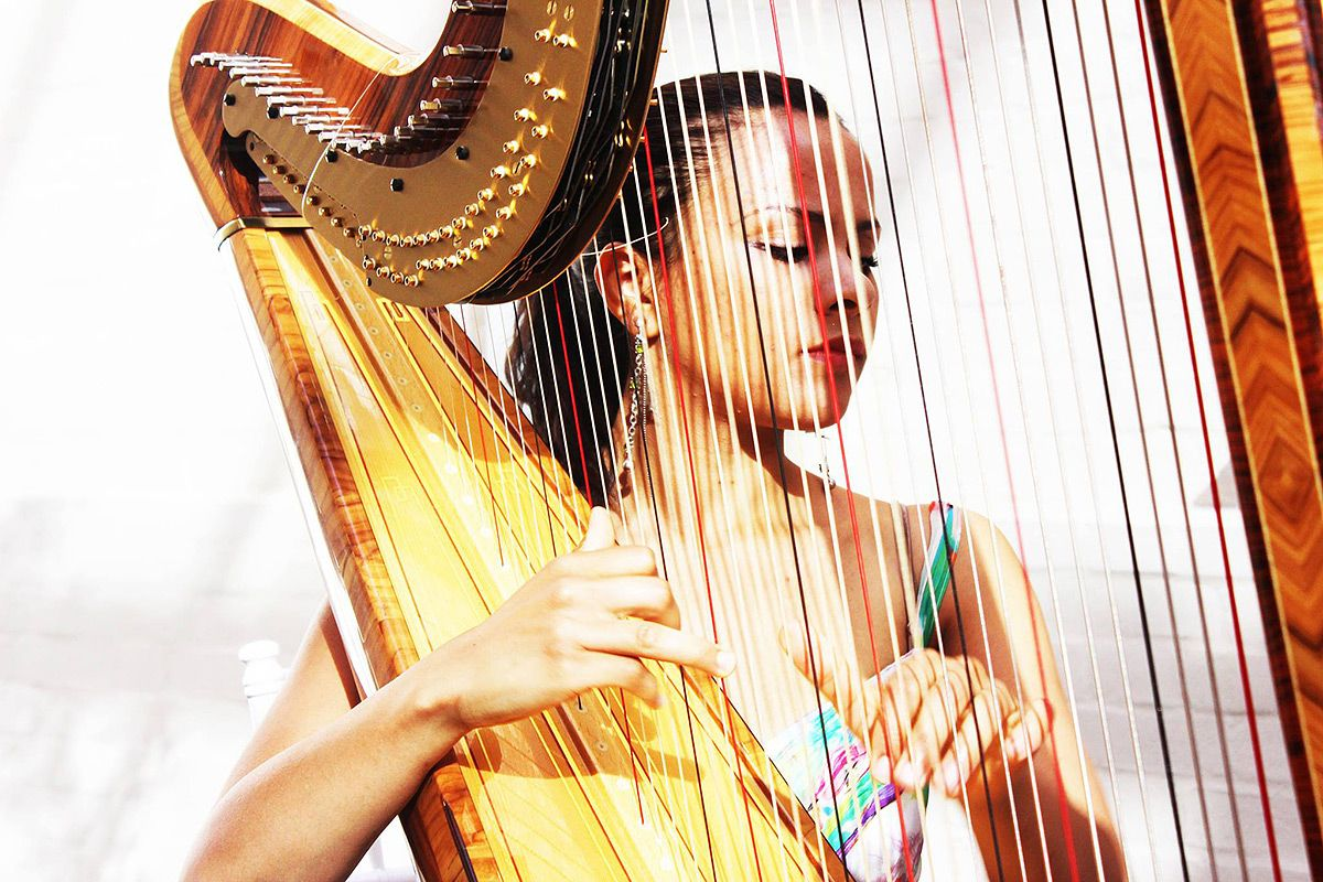 Female Harpist For Hire
